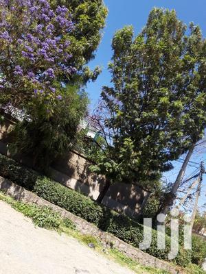 የሚሸጥ ፈራሽ ቤት አያት | Land & Plots For Sale for sale in Addis Ababa, Yeka