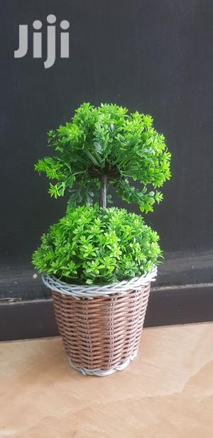 Artificial House Plant | Garden for sale in Addis Ababa, Kirkos