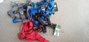 Harness and Leash   Pet's Accessories for sale in Addis Ababa, Bole