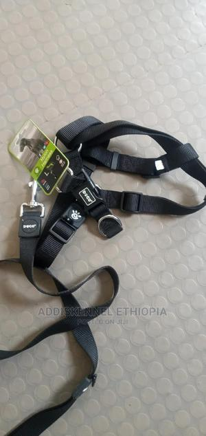 Leash and Harness   Pet's Accessories for sale in Addis Ababa, Bole