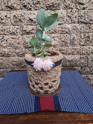 Handmade Knitted And Crotched Planter With Plants | Garden for sale in Addis Ababa, Yeka