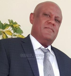 Tax Advisor   Accounting & Finance CVs for sale in Addis Ababa, Nifas Silk-Lafto