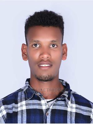 Mechanical Engineer | Engineering & Architecture CVs for sale in Addis Ababa, Kolfe Keranio