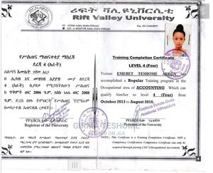 Accountant   Accounting & Finance CVs for sale in Addis Ababa, Nifas Silk-Lafto