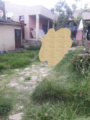 Yemeshet Lshap Bat Yalew Bota | Land & Plots For Sale for sale in Addis Ababa, Bole