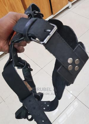 Dog Harness and Leash   Pet's Accessories for sale in Addis Ababa, Bole