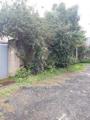 Yemeshet Ferashe Bat Yalew Bota Be Bole Mekaale | Land & Plots For Sale for sale in Addis Ababa, Bole