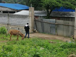 Land for Sale in Sebeta | Land & Plots For Sale for sale in Oromia Region, Oromia-Finfinne