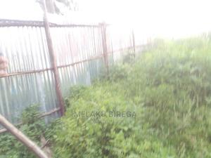 ለመኖሪያ / ለንግድ/ የሚሆን ባዶ ቦታ | Land & Plots For Sale for sale in Addis Ababa, Nifas Silk-Lafto