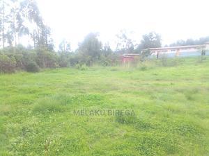 ለትምህርት ቤት አገልግሎት የሚውል | Land & Plots For Sale for sale in Addis Ababa, Kolfe Keranio