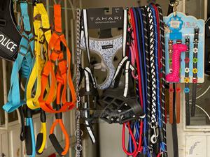 Dog Clippers, Brush, Belt,    Pet's Accessories for sale in Addis Ababa, Kirkos