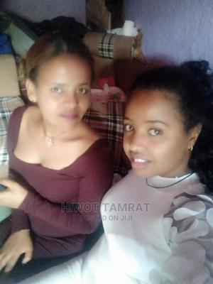 Chemical Plastic Raw Material Sales Person | Sales & Telemarketing CVs for sale in Addis Ababa, Akaky Kaliti