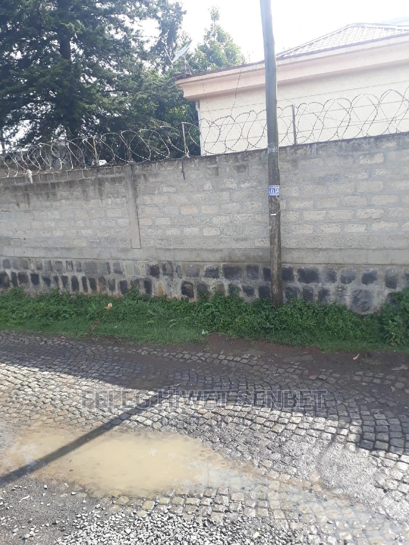 Yemeshet Konjo Villa Yalew 1000kare