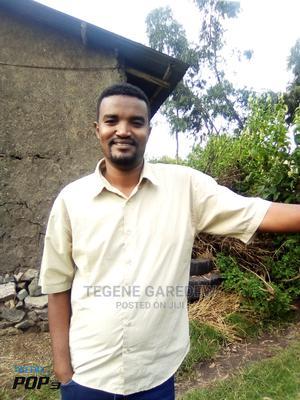 Full Time CV | Technology CVs for sale in Addis Ababa, Akaky Kaliti