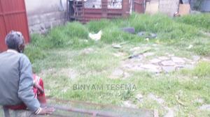 የሚሸጥ የድሮ ቪላ ጆኒ ጋራጂ አምቼ | Land & Plots For Sale for sale in Addis Ababa, Bole